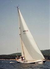 Hinkley 42 Furling Genoa.jpeg