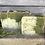 Thumbnail: Cactus Blossom Soap Bar