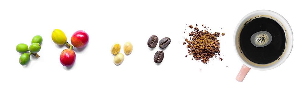 Types of Coffee Roast Explained