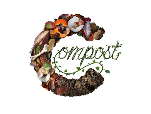 Why We Compost