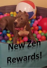 Zen Rewards.PNG