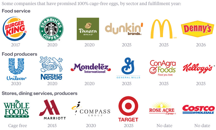 Major companies to commit to cage-free