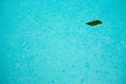 פסיפס בגוון אקוה מרינה לבריכה