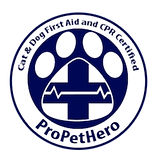 Cat & Dog First Aid & CPR Certified