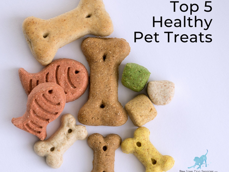 Top 5 Healthy Pet Treats