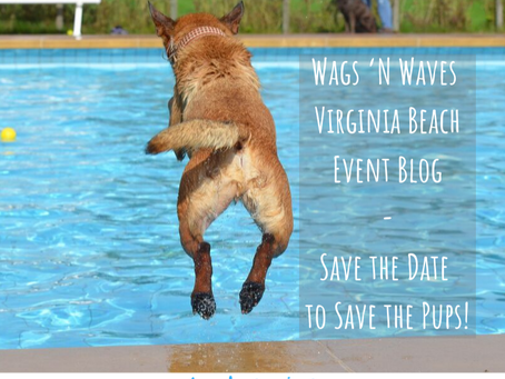 Wags 'N Waves Virginia Beach Event– Save the Date to Save the Pups!