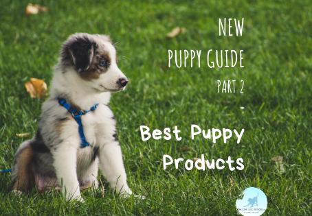 New Puppy Guide Pt 2: Best Puppy Products