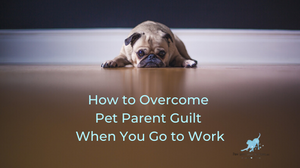 "Dog laying down with text ""how to overcome pet parent guilt when you go to work"""