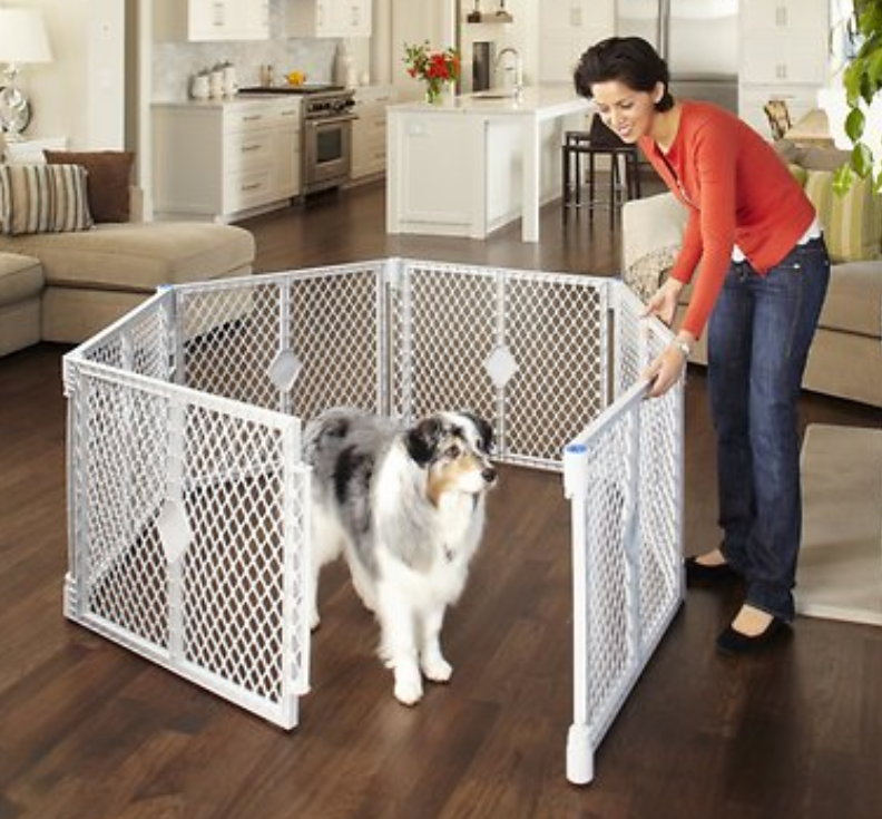 Woman enclosing dog into a playpen area.
