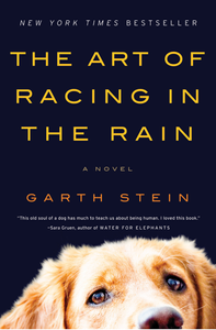 The Art of Racing in the Rain by Garth Stein Book Cover