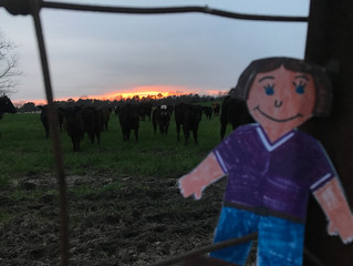 Flat Aggie Visits the Farm