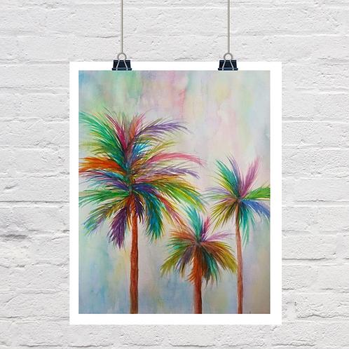 Rainbow Palm