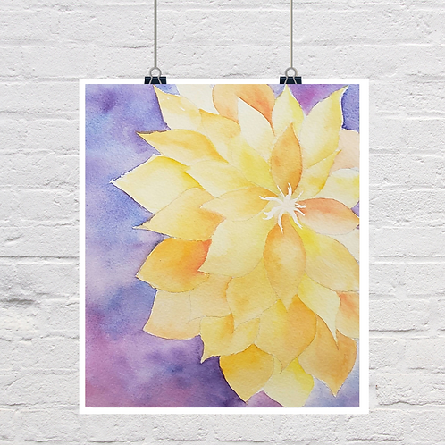 Epiphyllum original (SOLD)