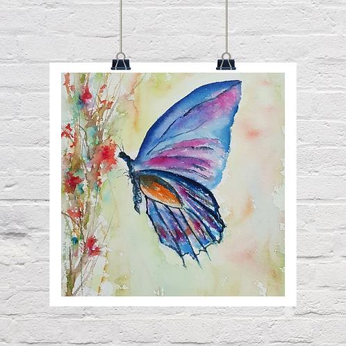 Butterfly Harmony