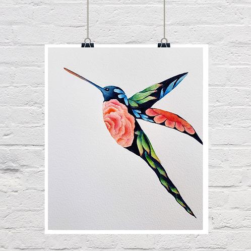 Hummingbird the 2nd