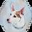 Thumbnail: Commissioned Pet Portraits