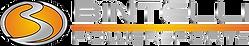 Bintelli Logo.png