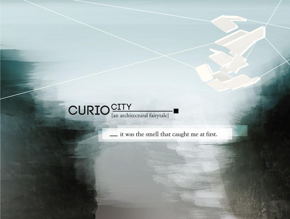 curiocity1.jpg