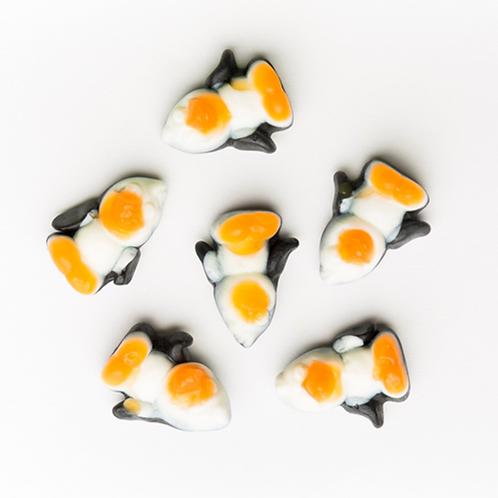 Pingouin à la pêche