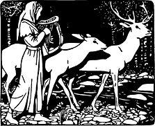 reindeer-2145673_1920.jpg