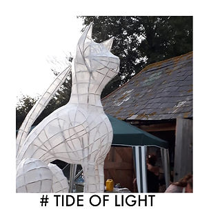 #TIDEOFLIGHT CAT.jpg