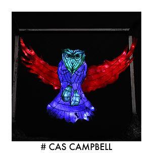 #CAS CAMPBELL IMAGE.jpg