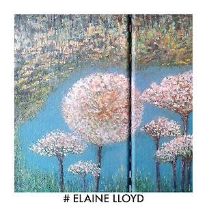 #elaine lloyd image.jpg