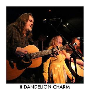 #DANDELION CHARM IMAGE.jpg