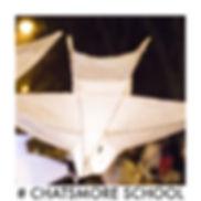 #Chatsmore school willow.jpg