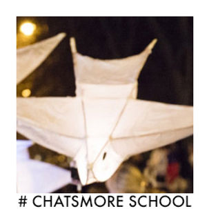 #Chatsmore school willow.jpg