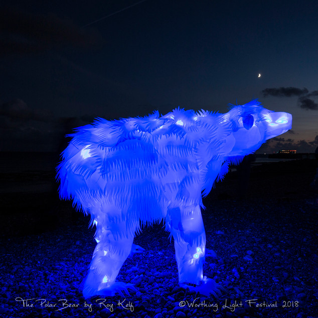 The Polar Bear at Night by Roy Kelf