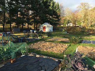 Garden yurt.jpg