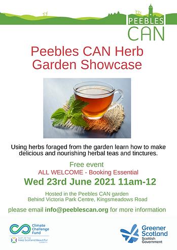 Herbal Tea - June.png