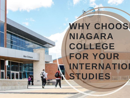Why Choose Niagara College for Your International Studies