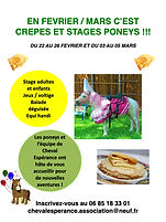 Affiche Stage HIVER 21.001.jpeg