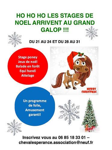 Affiche Stage Noel 2020.jpg