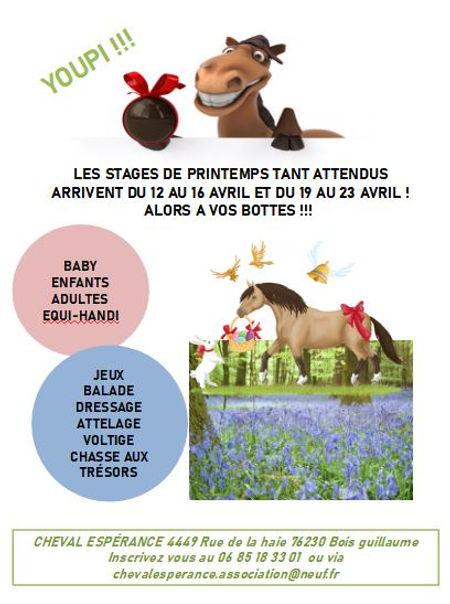 Affiche Stage PRINTEMPS 2021_1.jpg