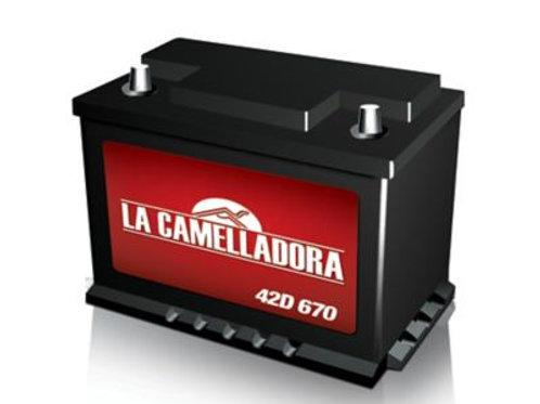 Bateria 48 D Willard Camelladora 850A