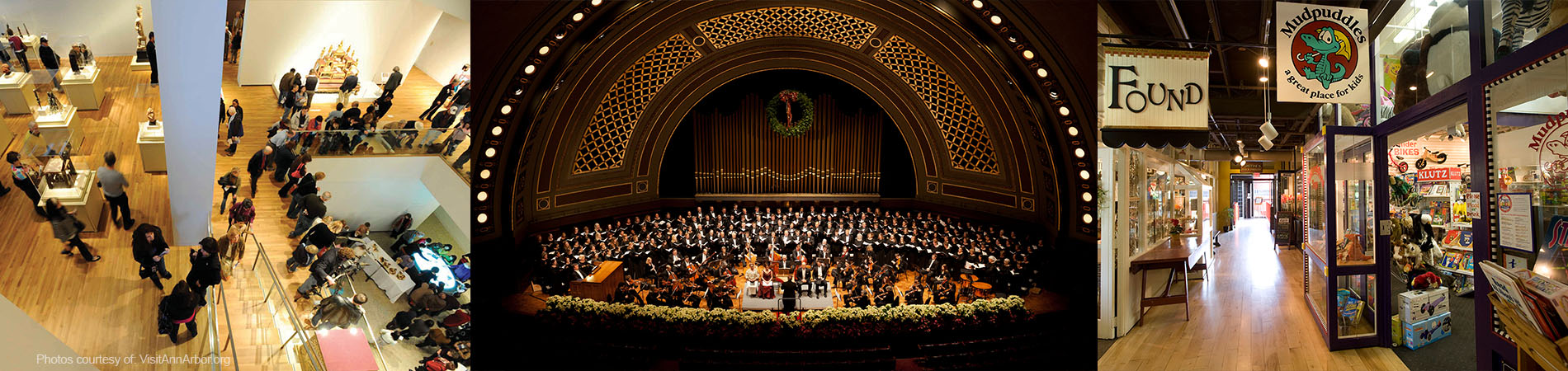 Ann Arbor Performing Arts