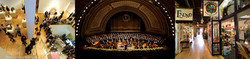 Ann Arbor Performing Arts