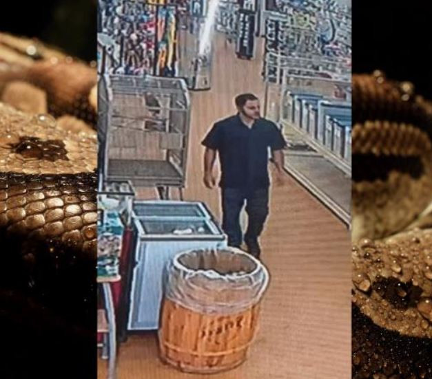 Man Steals 4-Foot-Long Python From Pet Store By Stuffing It Down His Pants