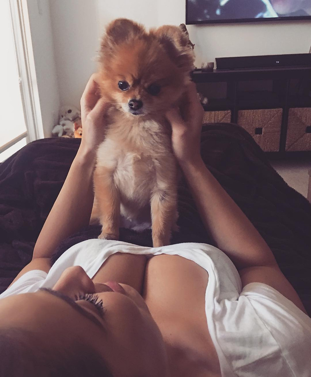 What is Sexy: Dog Lovers