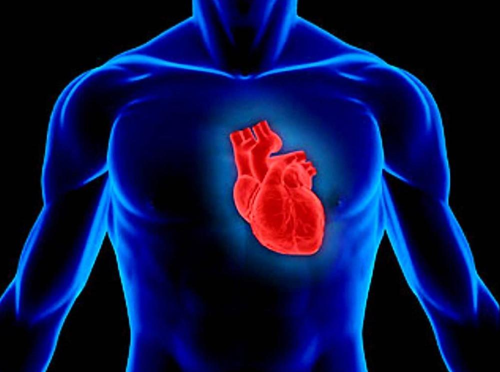 co q10 heart health