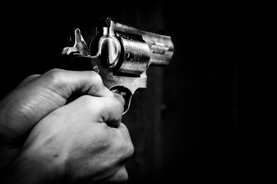 Gun Control and Immigration: A Simple Solution