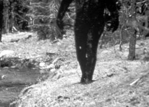 Bigfoot - Mуth Or Reality?