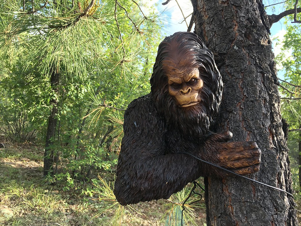 Is Bigfoot Immortal?