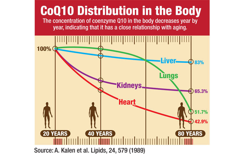 co q10 in the body