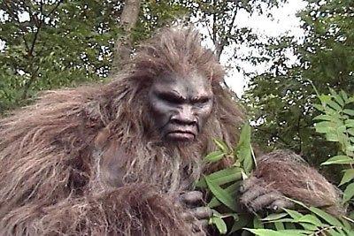 Bigfoot Suit For Sale on EBay