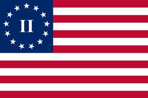second amendment flag