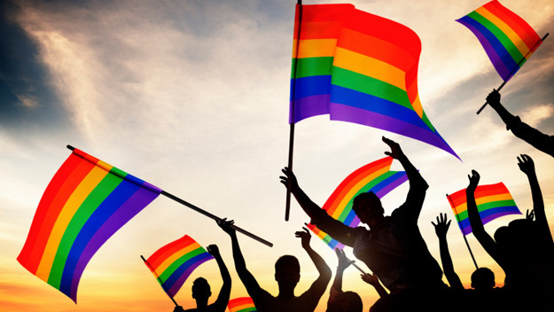 LGBT History In Public Schools
